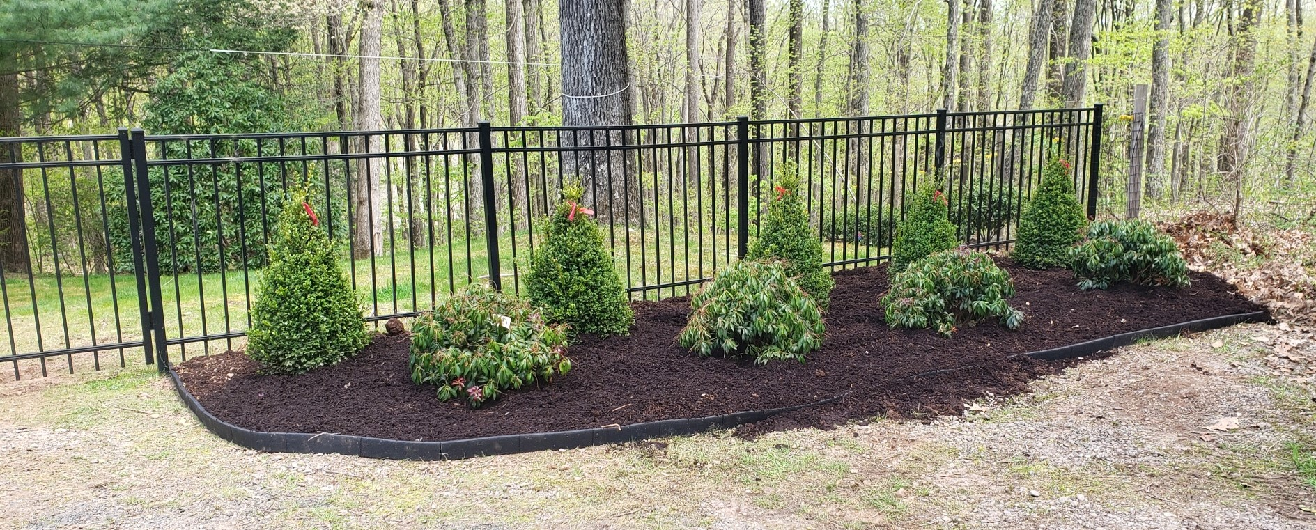 plantings bottom of driveway finished.jpg