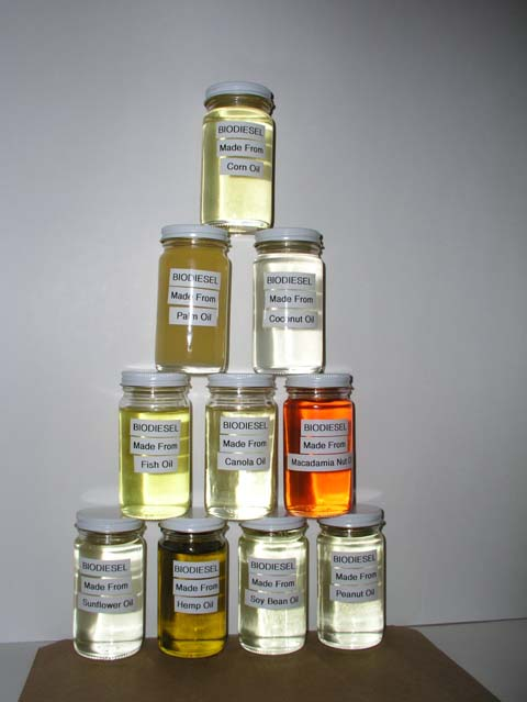 Jars of biodiesel labled according to their various sources.