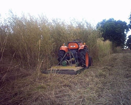 Mowing tall grass with Kubota